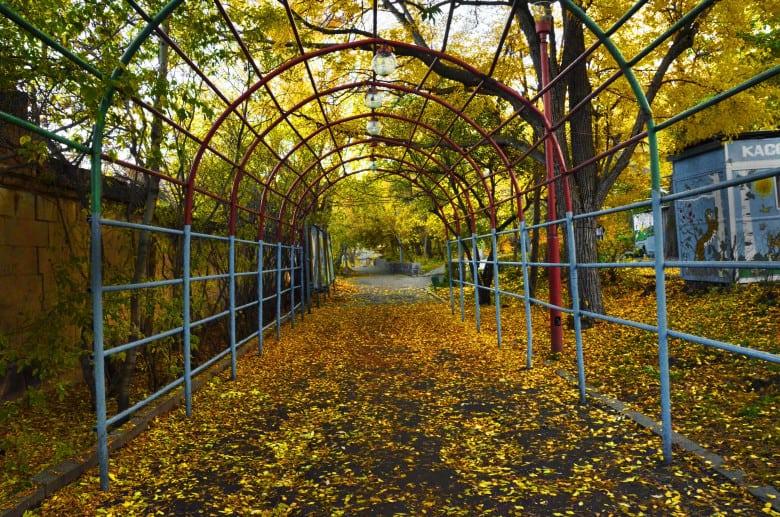 Central park(Gorky Park)