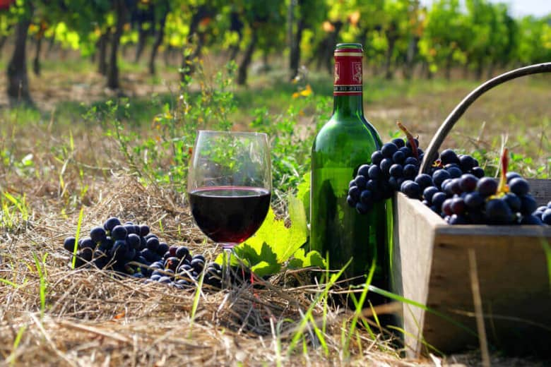 Taste Armenian mouth-watering wine
