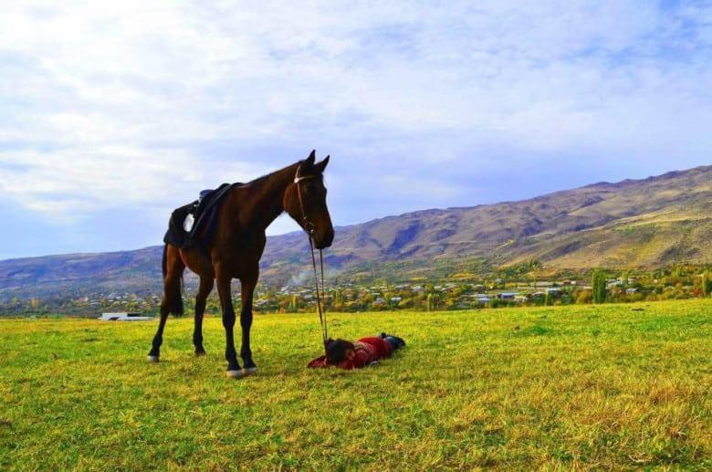 Horse riding tours in Armenia